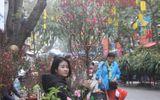 Tin trong nước - Người dân nô nức ghé thăm phiên chợ hoa Tết lâu đời nhất Hà Nội trong ngày rét ngọt