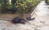 Pháp luật - Vụ vợ chồng cụ ông 75 tuổi ở Hưng Yên bị truy sát: Nghi phạm đối mặt với hình phạt nào?
