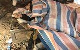 Pháp luật - Tin tức pháp luật mới nhất ngày 22/1/2020: Thông tin mới nhất vụ đối tượng nổ súng khiến 7 người thương vong ở Lạng Sơn