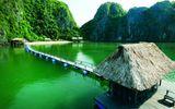 Đời sống - Vịnh Lan Hạ lọt top đẹp nhất thế giới