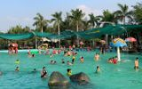 Tin trong nước - Hai chị em đuối nước tử vong tại hồ bơi trong khu du lịch ở Đồng Nai