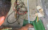 Xác định danh tính người chồng sát hại vợ bằng dụng cụ kích điện tại nhà