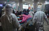 Tình hình dịch virus corona ngày 8/2: Hơn 700 người tử vong, nghi ngờ vật chủ trung gian mới