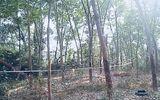 Tin tức thời sự mới nóng nhất hôm nay 15/2/2020: Phát hiện thi thể nam giới tử vong bất thường trong rừng cao su