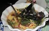 Ăn - Chơi - Dù biết độc nhưng những món ăn này vẫn là đặc sản ở một số nước