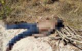 An ninh - Hình sự - Phát hiện xác chết nam giới bịt mắt ở gần bờ sông
