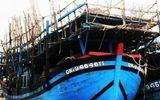 Tin trong nước - Đang đánh bắt hải sản, tàu câu mực chở 33 ngư dân bốc cháy dữ dội