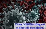 Sức khoẻ - Làm đẹp - Virus corona (Covid-19) sống sót trong nhiệt độ bao nhiêu?