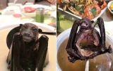 Chính quyền Trung Quốc cấm người dân ăn thịt động vật hoang dã