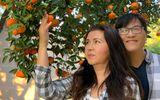 Chuyện làng sao - Cận cảnh khu vườn đầy hoa trái của vợ chồng Phương Thảo - Ngọc Lễ ở Mỹ