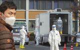 Tình hình dịch Covid-19 ở Hàn Quốc: Thêm 376 ca nhiễm mới, 17 người đã tử vong