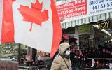 Canada xuất hiện trường hợp lây nhiễm Covid-19 trong cộng đồng đầu tiên