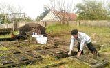 Kỳ bí khu lăng mộ thờ thần cá và lễ hội cầu ngư ở Hà Tĩnh