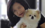 Chú chó đầu tiên nhiễm Covid-19 đã chết