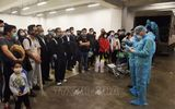 Khẩn cấp tìm hành khách trên 3 chuyến bay có người nhiễm Covid-19