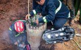 Gia Lai: Giải cứu bé trai mắc kẹt trong trụ điện