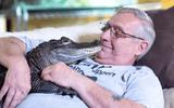 Tin tức đời sống mới nhất ngày 25/3/2020: Hết trầm cảm nhờ nuôi cá sấu làm thú cưng
