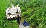 Tin trong nước - Hoảng hồn phát hiện thi thể người đàn ông bên cạnh xe máy chở đầy vịt
