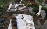 Phát hiện 4 bộ xương người gần sông Sài Gòn, công an lấy mẫu xét nghiệm ADN