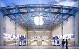 Apple bị người dùng iPhone Xr đâm đơn kiện tập thể