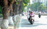 Tin tức dự báo thời tiết mới nhất hôm nay 27/4/2020: Hà Nội nắng ấm