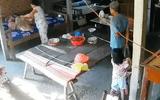 Vụ cụ bà 88 tuổi bị ngược đãi ở Tiền Giang: Vợ chồng người con trai lãnh án tù