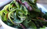 Tưởng mát ăn nhiều, ai ngờ rau dền cũng gây hại cho sức khỏe vì điều này
