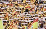 Tin tức thể thao mới nóng nhất ngày 19/5/2020: Trận Nam Định - HAGL có thể đón khán giả?