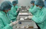 Việt Nam tiến hành đợt 2 tiêm thử nghiệm vaccine Covid-19 trên chuột