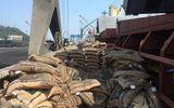 Cục Hải Quan bắt giữ tàu vận chuyển trái phép hơn 41 tấn gạo