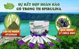 Xã hội - Tảo Spirulina - Thực phẩm bổ dưỡng nhất trong thời kì hiện đại với vị ngon khó cưỡng không thể quên