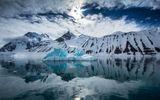 Video-Hot - Video: Cận cảnh cuộc sống làm bạn với băng giá và cá biển ở Bắc Cực