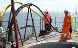 Internet & Web - Cáp quang biển AAG lùi hạn sửa xong đến ngày 6/6 vì phát hiện điều bất ngờ