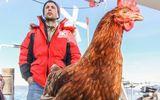 """Chàng trai cùng gà mái du lịch khắp 5 châu, minh chứng """"người yêu không cần có nhưng gà phải có một con"""""""