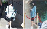 Giải trí - Sau loạt ảnh ở phòng gym, Triệu Lệ Dĩnh lại khoe chân thon khiến cả mạng xã hội Weibo dậy sóng