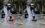 Video-Hot - Video: Mải chơi điện thoại, nam thanh niên rơi xuống cống