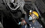 Tin trong nước - Tụt gương lò than ở Quảng Ninh, một công nhân tử vong thương tâm