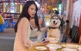 """Video: Husky giở trò """"ăn cháo đá bát"""" khiến cô gái nhận cái kết đắng"""