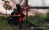 """Hàn Quốc cảnh báo Triều Tiên phải """"trả giá"""" nếu có hành động quân sự"""