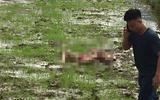 Vụ thảm án 3 người chết ở Điện Biên: Phó Giám đốc Công an tỉnh nói gì?