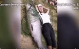 """Video: Ngư dân thích thú bắt được cá trắm đen """"siêu to khổng lồ"""""""