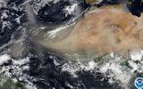 Video: Cận cảnh khối bụi dài 2.400 km từ Sahara bao trùm Caribe