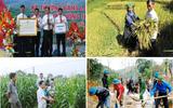 """Thành phố Yên Bái """"vươn  mình"""" mạnh mẽ phấn đấu  hoàn thành nhiệm vụ xây dựng nông  thôn mới trong năm 2020"""