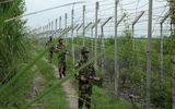 Tin thế giới - Giao tranh tại biên giới Ấn Độ - Pakistan, một binh sĩ tử vong