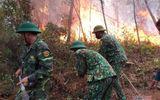 Tin trong nước - Nghệ An: Rừng thông bốc cháy ngùn ngụt giữa trưa nắng nóng