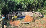 Tin trong nước - Dốc sức cứu chữa nạn nhân và làm rõ nguyên nhân vụ xe khách lao xuống vực ở Kon Tum