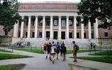 Tin thế giới - 59 trường đại học Mỹ ủng hộ kiện chính quyền Tổng thống Trump