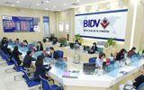 Kinh doanh - BIDV rao bán khoản nợ 240 tỷ đồng của Công ty Nam Sơn