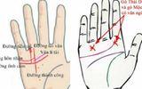 Đặc điểm của bàn tay