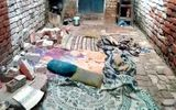 Khỉ quậy phá làm sập tường, khiến 5 người trong một gia đình thiệt mạng